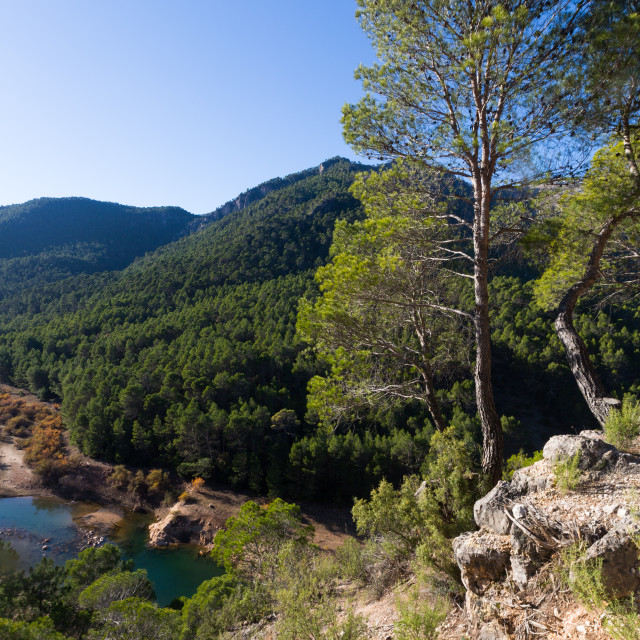 """""""Mountains river with forest riverside"""" stock image"""