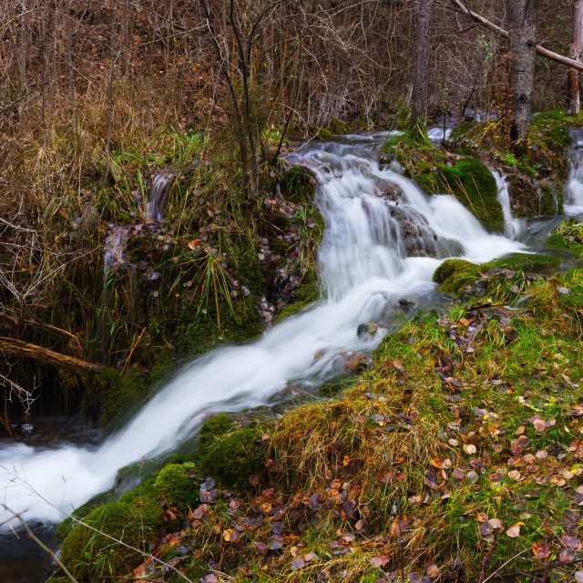 """""""stream at forest in autumn"""" stock image"""