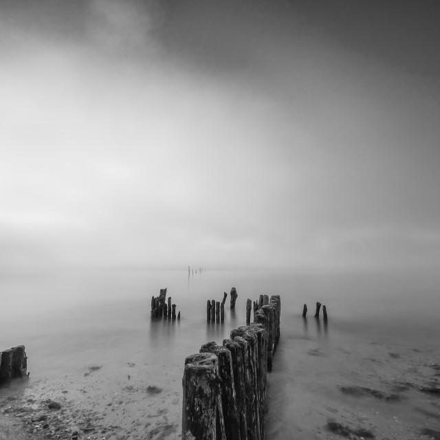 """Fog on the Suir at Woodstown Beach"" stock image"