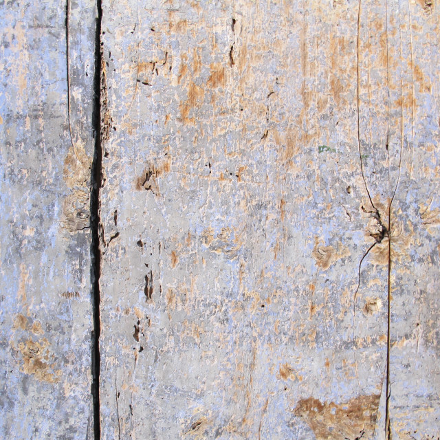 """""""Old painted wooden door"""" stock image"""