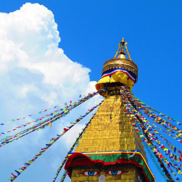 """""""Bouddhanath Stupa, Kathmandu"""" stock image"""