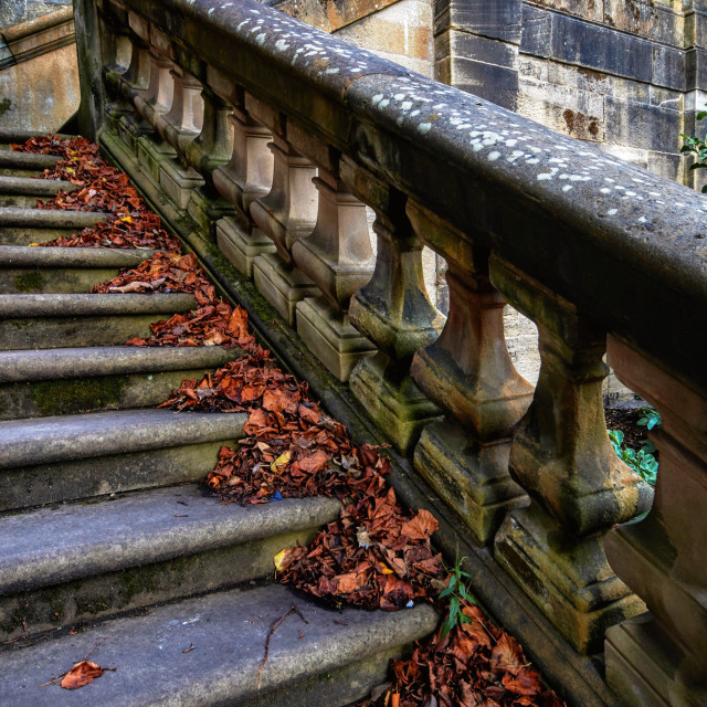 """Autumnal steps"" stock image"