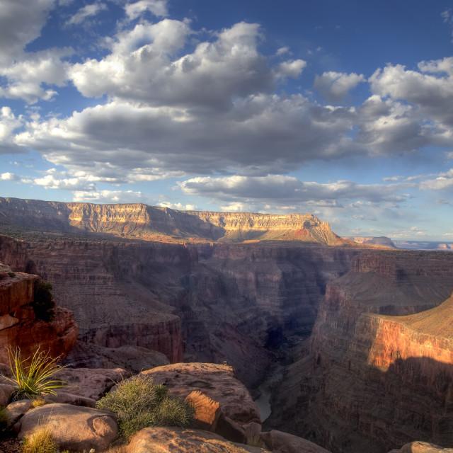 """Grand Canyon at Toroweap"" stock image"