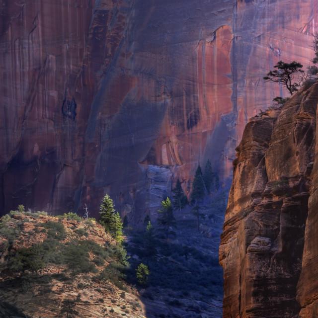 """Zion Canyon"" stock image"