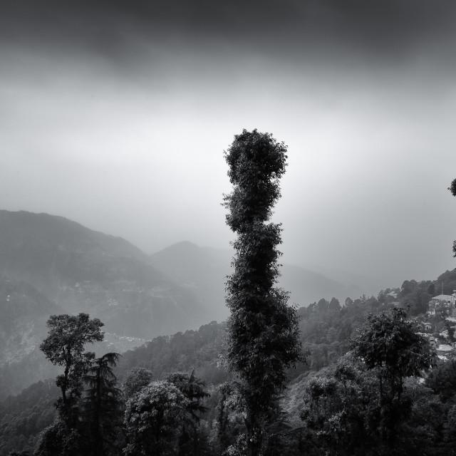 """""""Mountain Residences - Study 2"""" stock image"""