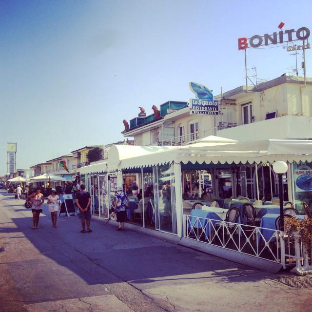 """""""Bonito Viareggio"""" stock image"""