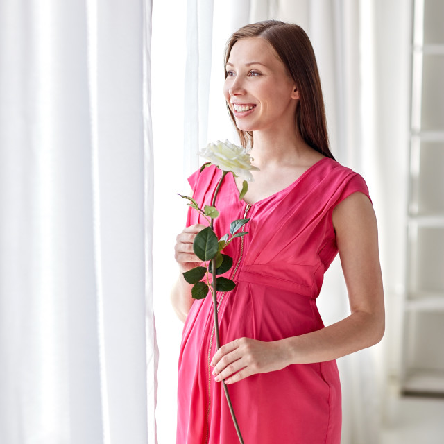 """""""happy pregnant woman with rose flower at home"""" stock image"""