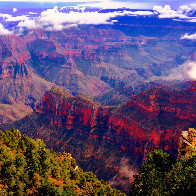 """Grand Canyon North Rim"" stock image"