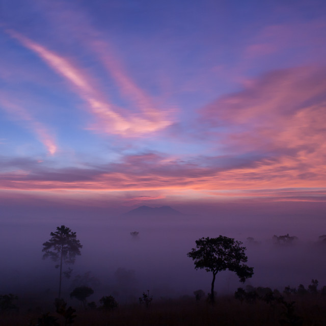 """Mountain valley during sunrise at Thung Salaeng Luang National P"" stock image"
