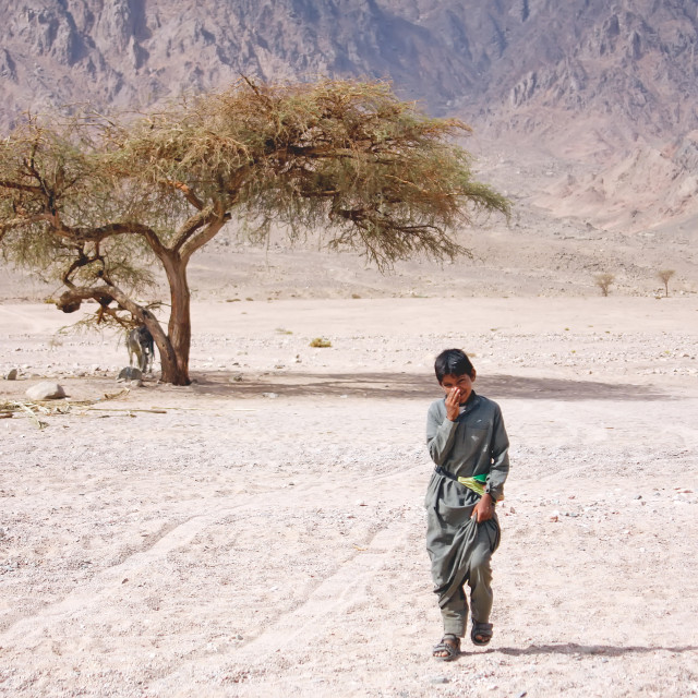 """boy walking alone through the desert near sharm el sheikh in egypt"" stock image"