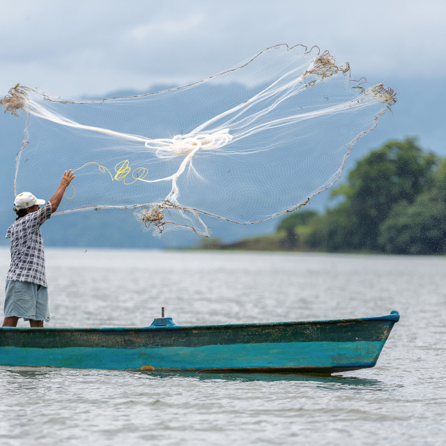 """A fisherman casts his net into a lake in catemaco, veracruz, Mexico"" stock image"