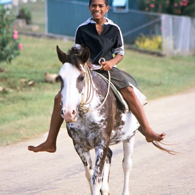 """""""a young smiling boy riding a Horse in Tonga"""" stock image"""