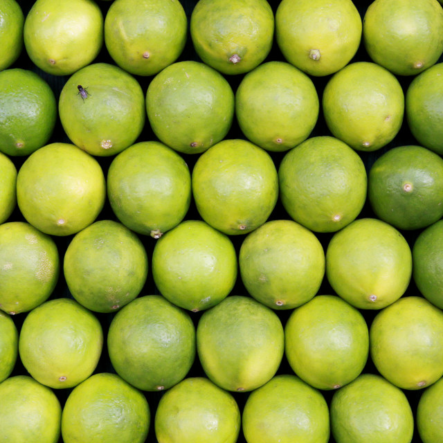 """A macro shot of a market stand with limes for sale"" stock image"