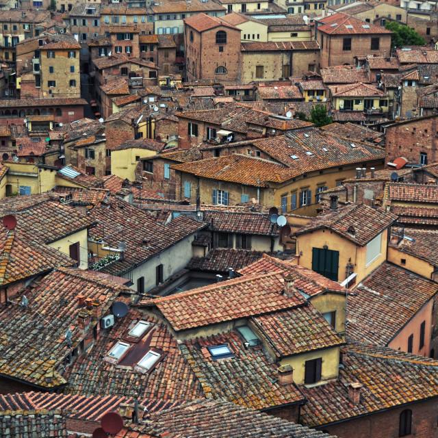 """Siena, Toscana"" stock image"