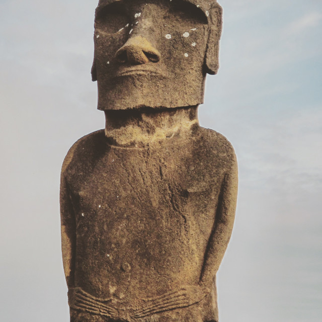 """Bird on Moai's head"" stock image"