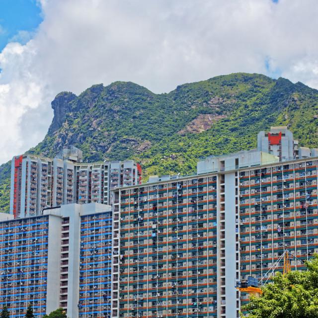 """hong kong public estate with landmark lion rock"" stock image"