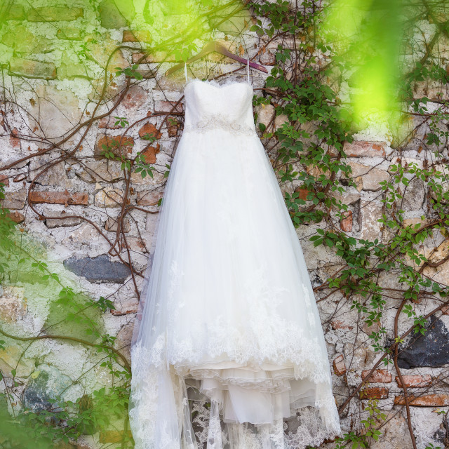 """Brides dress hanging on a wall with vines"" stock image"