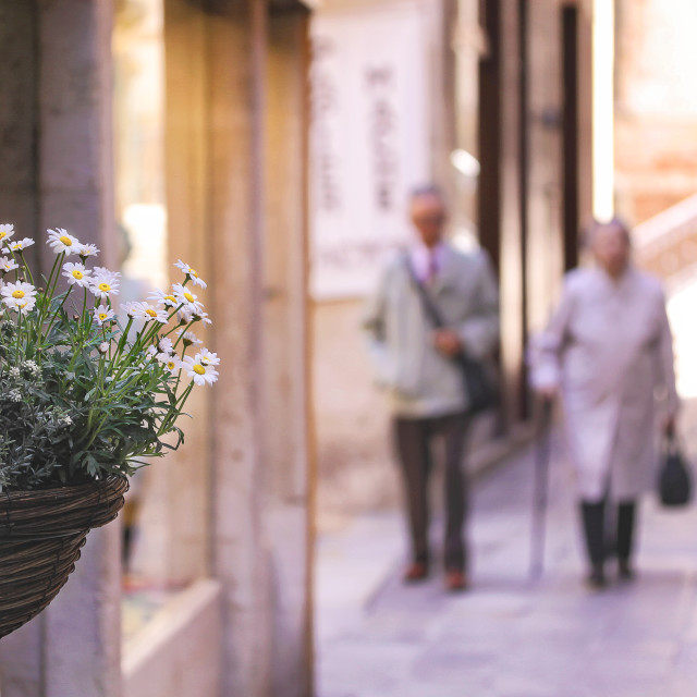"""A hanging flower pot in a cobbled road with an elderly couple walking in the distance"" stock image"