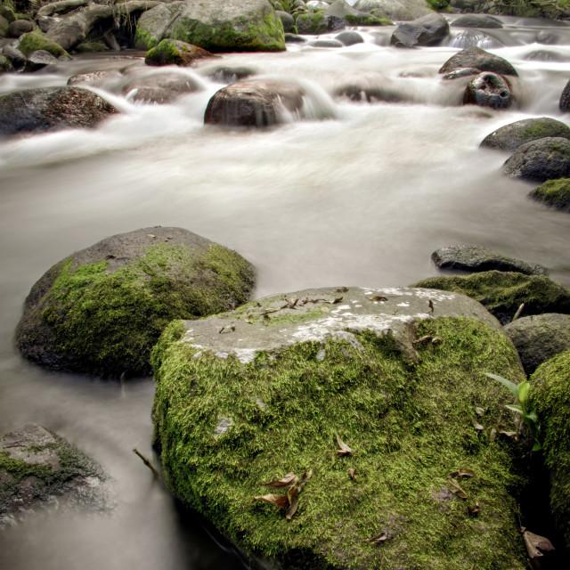 """The Texolo Waterfall in Veracruz, Mexico"" stock image"