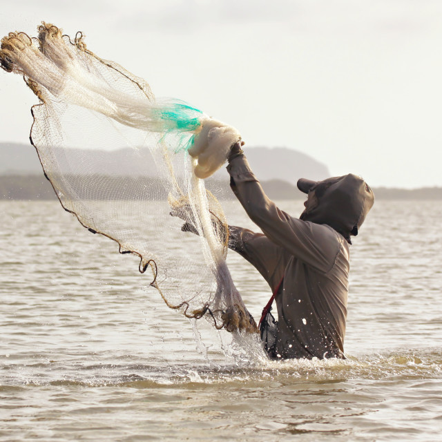 """A fisherman standing in waste-deep water launches his fishing net into the sea hoping to catch fish."" stock image"