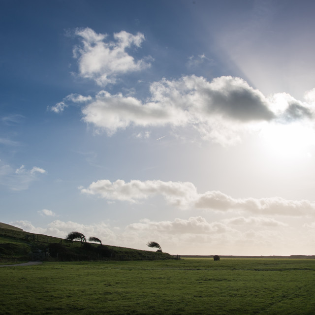 """Bright Sky, Seven Sisters"" stock image"