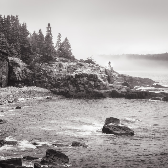 """Acadia National Park II 