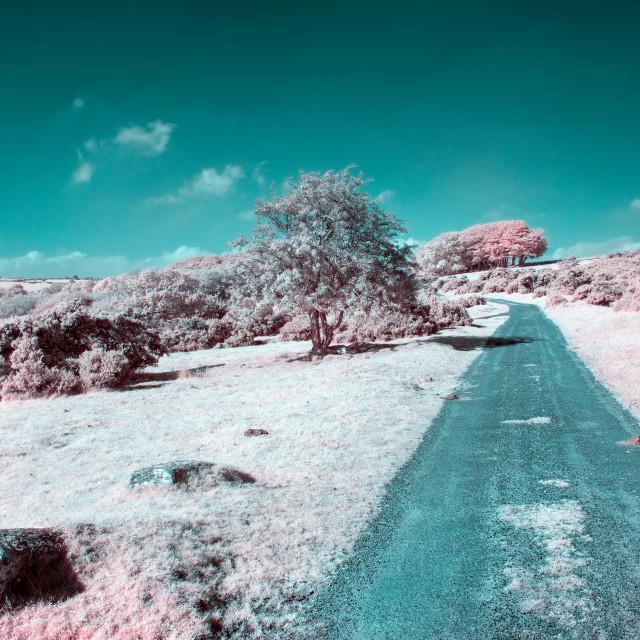 """Bodmin Moor in Infrared"" stock image"