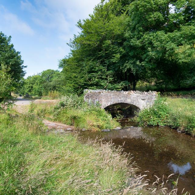 """Robber's Bridge on Exmoor"" stock image"