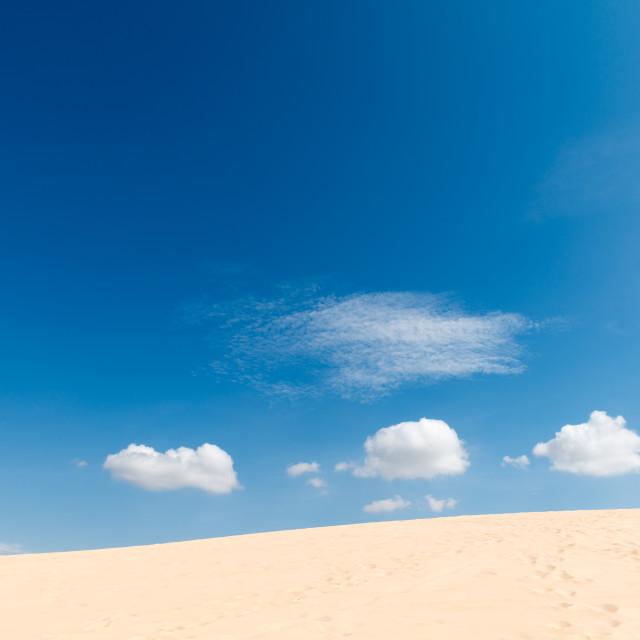 """""""Desert sand dunes"""" stock image"""