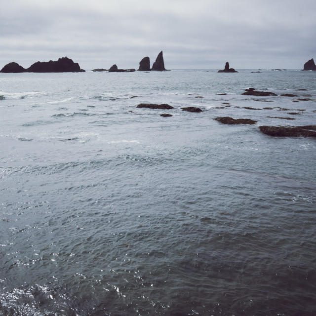 """Seascape at Olympic National Park"" stock image"