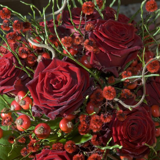 """bouquet"" stock image"