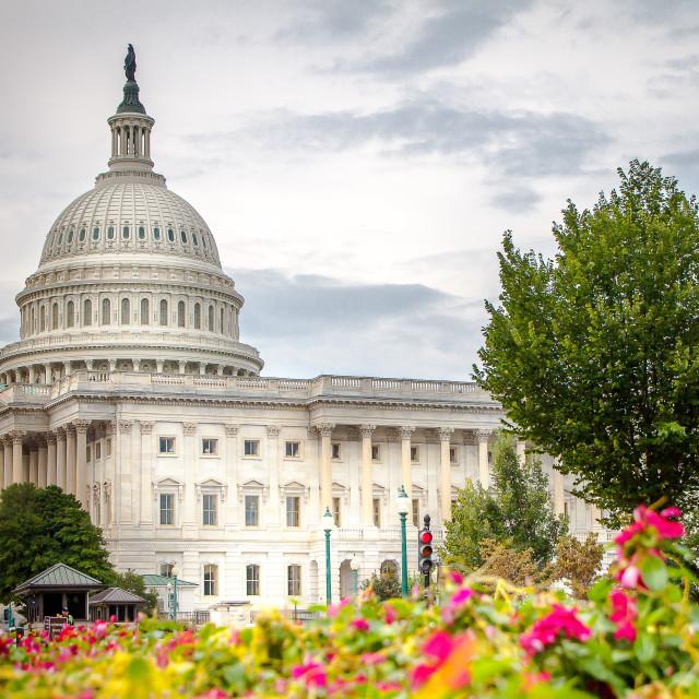 """""""Washington Capitolio"""" stock image"""