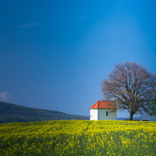"""Romantic countryside with small chapel P"" stock image"