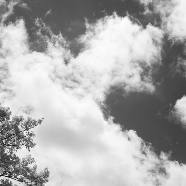 """""""Clouds."""" stock image"""