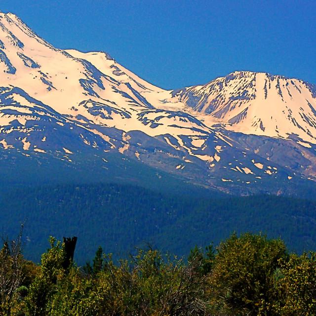 """Mt. Shasta and Shastina"" stock image"