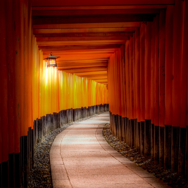 """Fushimi Inari Shrine"" stock image"