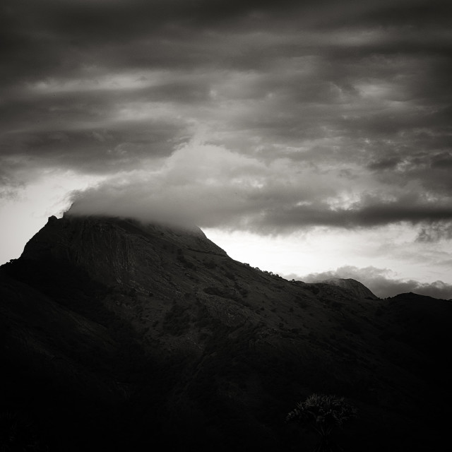 """Western Ghats - Study 3"" stock image"