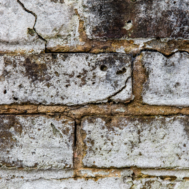 """""""Brick in the Wall"""" stock image"""