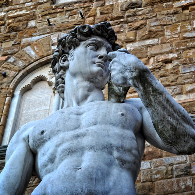 """David, Florencia"" stock image"