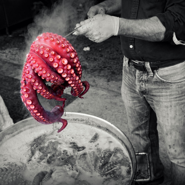 """""""Man in gloves holding red octopus ready to boil"""" stock image"""