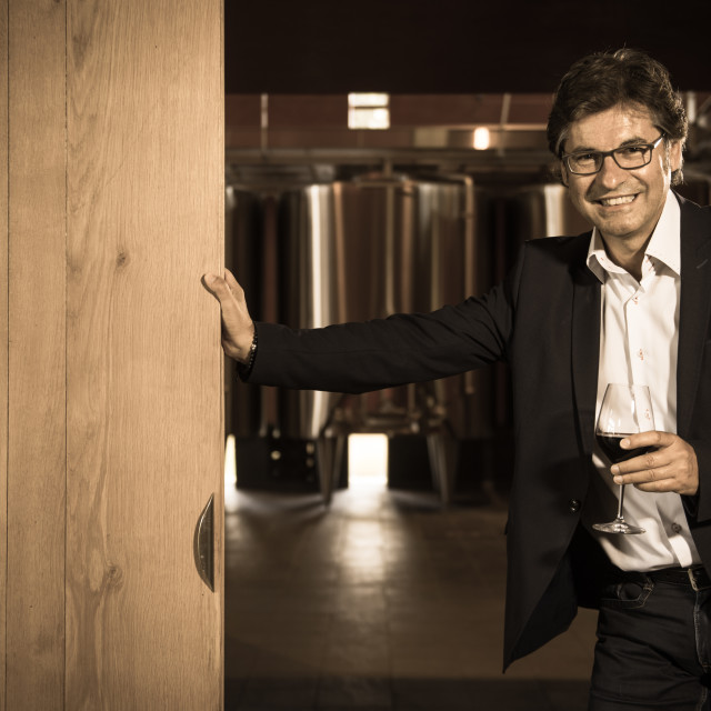 """""""Portrait confidant vintner drinking red wine in winery"""" stock image"""