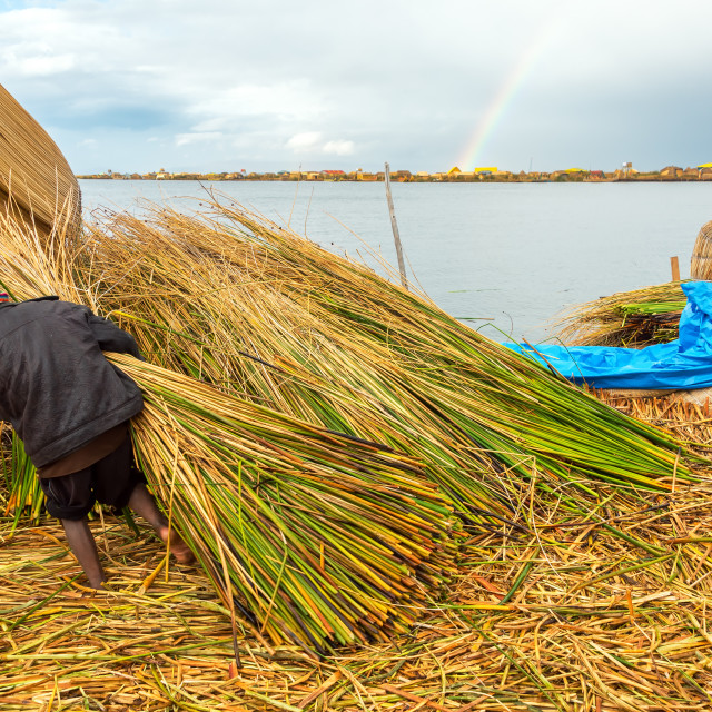 """Uros Islands Worker"" stock image"