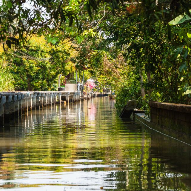 """""""Green Canal"""" stock image"""