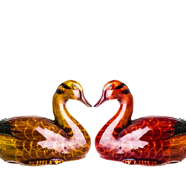 """Marriage Ducks"" stock image"