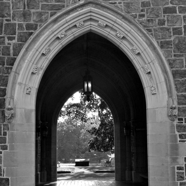 """Through the Portal"" stock image"