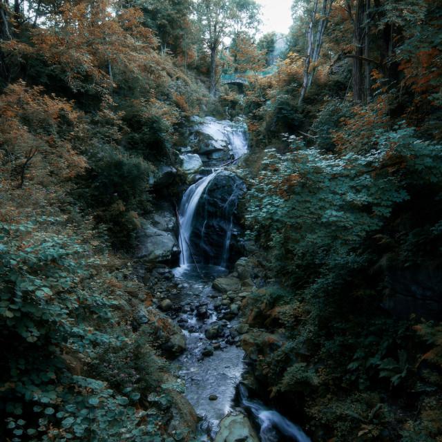"""The Cervo waterfall of Miagliano"" stock image"