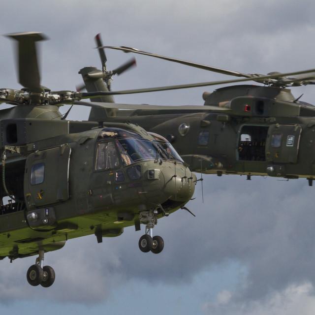 """""""Royal Naval Air Service"""" stock image"""