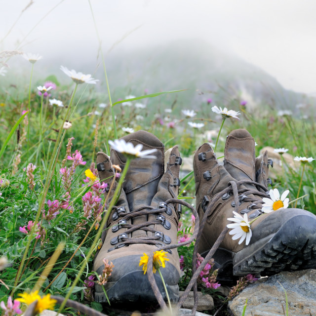 """""""hiking shoes with flowers"""" stock image"""