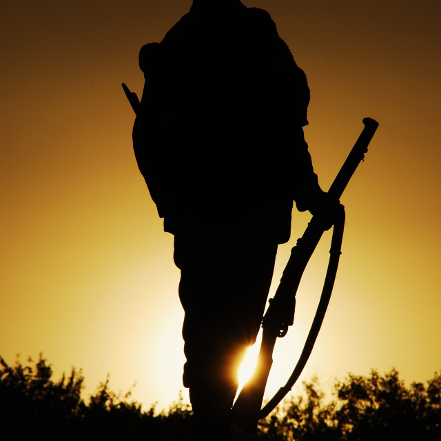 """The Lone soldier"" stock image"