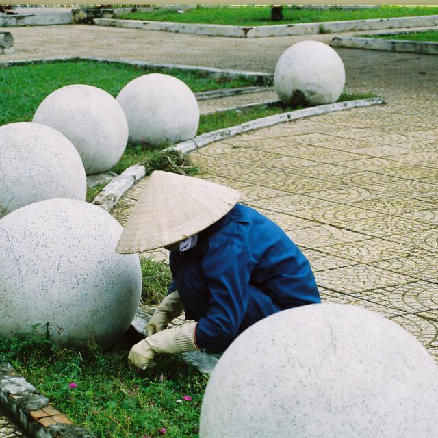 """Vietnamese horticulturist"" stock image"
